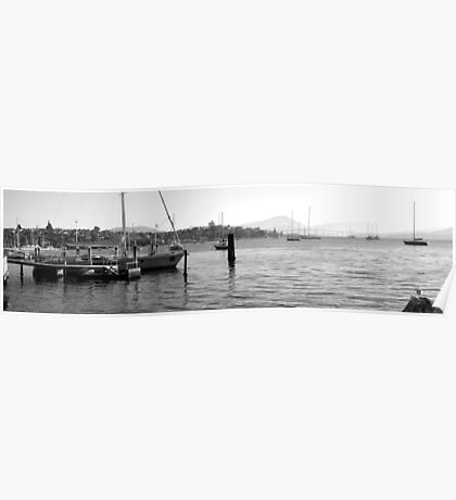 Early morning marina in Hobart Derwent River - panorama-   B & W Poster