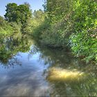River Colne by Chris Day