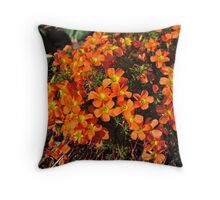 Brilliant Oxalis Throw Pillow