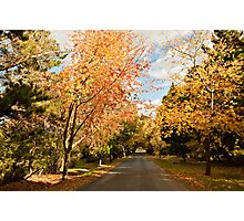 Autumn at Hill End Photographic Print