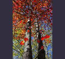 Foliage Afire Hoodie