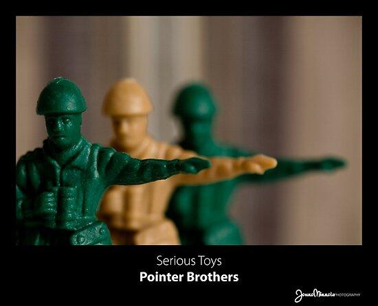 Serious Toys - Pointer Brothers by Jouko Mikkola