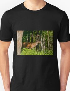 Young Bull Red Deer Unisex T-Shirt