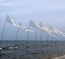 Peace flags by michele1x2