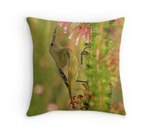 Sweet Nectar.............. Throw Pillow