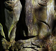 The Wood Carving by Mike Topley