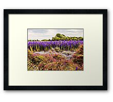 Nature's Canvas Framed Print
