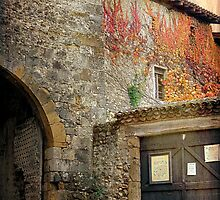 Autumn in France by Maureen Grobler