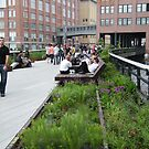 High Line, New York's Elevated Garden and Walkway by lenspiro