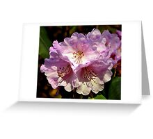 Rhododendron. Greeting Card