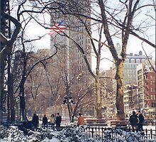 Flatiron Building, Madison Square Park, Snow View by lenspiro
