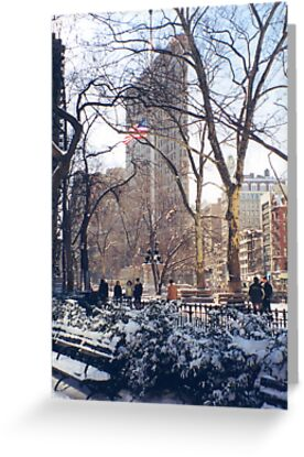 Flatiron Building, Madison Square Park, Snow View by lenspiro