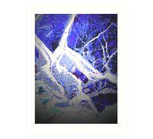 Snow and Shadow Art Print