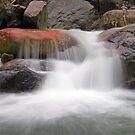 Stream, Cervo Valley by jimmylu