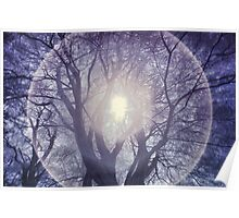 Tree with Halo Poster