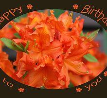 Happy Birthday to you by RosiLorz