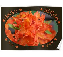 Happy Birthday to you Poster