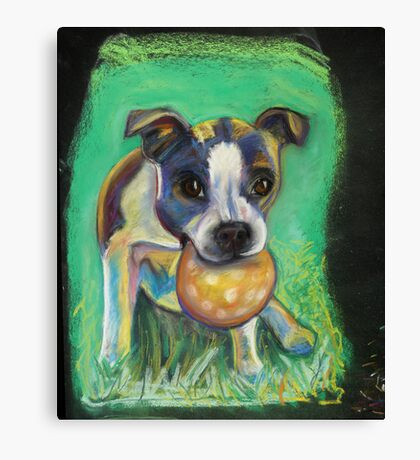Boston Terrier with Ball Canvas Print