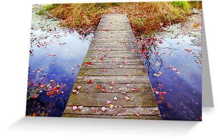 Autumn Walkway by Nina Cazille