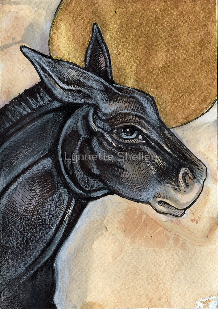 The Donkey by Lynnette Shelley