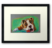 Bulldog with Red Ball Framed Print