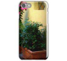 Courtyard Flower Display iPhone Case/Skin