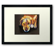 Golden Lab with Baseball Framed Print