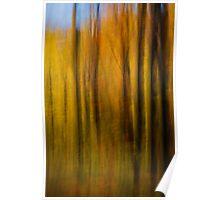 Autumn Treasure 3 Poster