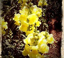 Tally flowers by BigJ1974