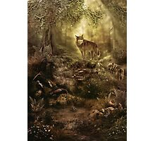 The Kin, Wolves in the Forest Photographic Print