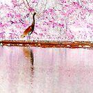 Heron Invert by Sunshinesmile83
