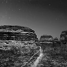 light the outback path monotone by Les Pink