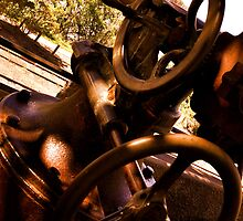 Cannon - Queens Park - Maryborough by yourfireislame