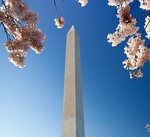 Springtime at Washington Monument by Inge Johnsson