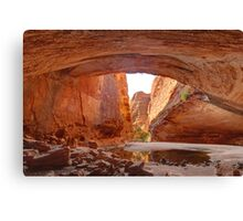 Majestic cathedral gorge Canvas Print