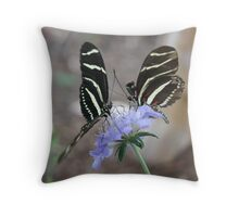 Zebra Longwing Butterflies... Throw Pillow