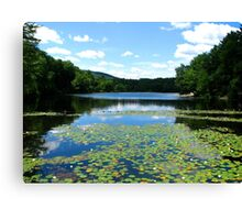 Wishing Summer Would Never End Canvas Print
