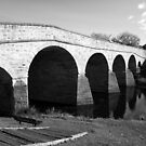 Oldest bridge in Australia-built 1823 - Tasmania  -  B&W by lighthousecove