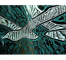 Memorial Swallows Photographic Print