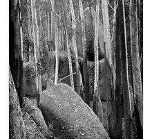 Sacred Rocks - Gulaga Mountain by pcbermagui