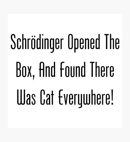 Schrodinger Opened The Box, And Found Cat Eveywhere! Photographic Print