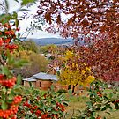 Yackandandah Autumn Series ~ Over The Courthouse by Jane Keats