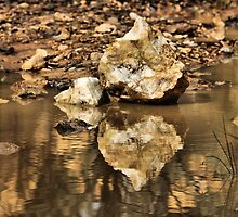 Reflections of Gold - Tambaroora NSW Australia by Bev Woodman