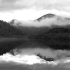 Gordon River reflections   -  Tasmania   -  B&W by lighthousecove
