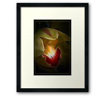 Pistacio Orchid Framed Print
