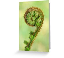 Scottish fern Koru Greeting Card