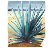 Agave en la Playa - oil painting of cactus on a Mexican beach Poster