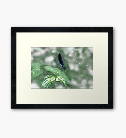 Leaf Dancing Framed Print