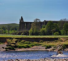 Bolton Abbey  by dewhud