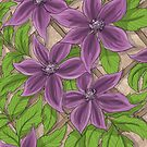 Clematis Wall by Kirsty Mordaunt